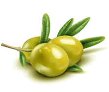 max-natural-foods-olive-large